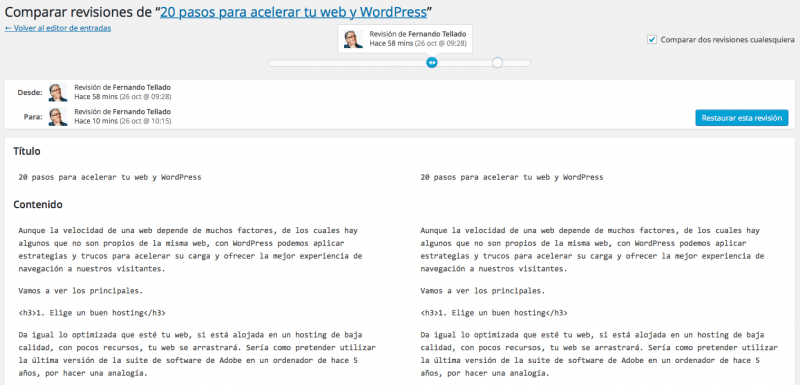 revisiones wordpress