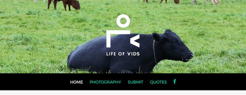 life-of-vids-banco-vídeos-gratis