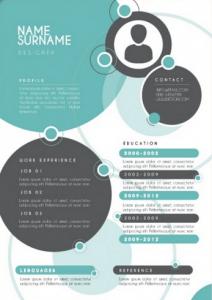 curriculum infográfico ejemplo