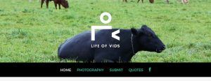 imagen-herramienta-descargar-videos-gratis-Life-of-vids